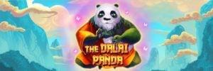 Dalai Panda